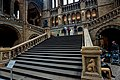 London - Cromwell Road - Natural History Museum 1881 by Alfred Waterhouse - Central Hall - View Up the Stairs towards Charles Darwin's Statue.jpg