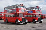 London Transport buses RT113 (FXT 288) & RT8 (FXT 183), 2012 North Weald bus rally (4).jpg