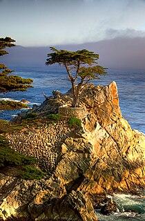 Pebble Beach, California Unincorporated place in California, United States