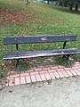 Long shot of the bench (OpenBenches 2627-1).jpg