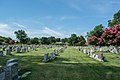 Looking SW at section 69-68 - Mt Olivet - Washington DC - 2014.jpg