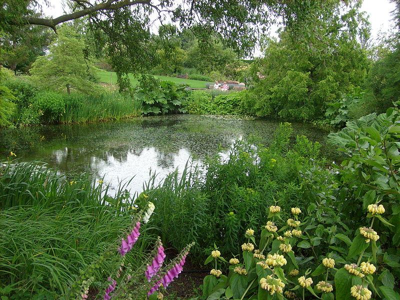 File:Lower pond at Hyde Hall.JPG