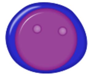 Lymphoblast - Lymphoblast
