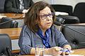 MERCOSUL - Representação Brasileira no Parlamento do Mercosul (25364111653).jpg