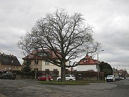 Eigenheimstraße in Leipzig