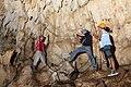 MNH field biologists collect bat specimens.jpg