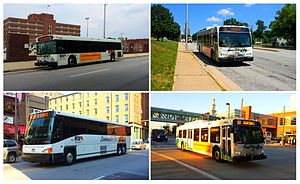 MTA Maryland bus service - top left: QuickBus, top right: Local, bottom left: Commuter, bottom right: Express
