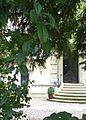 Maison Renaudin 49-51 rue Pasteur-Nancy-détail entrée-WP 20160919 023.jpg