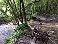 Malom-völgyi-patak áradáskor - panoramio.jpg