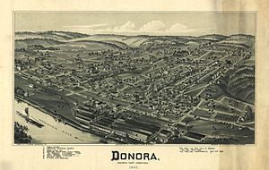 Donora, Pennsylvania - A pictorial map of Donora from 1901