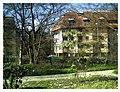 March Spring Botanischer Garten Freiburg - Master Botany Photography 2013 - panoramio (12).jpg