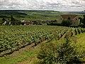 Marne Hautvillers Forets et Vignes 22062016 - panoramio.jpg
