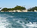Matsushima Bay 松島灣 - panoramio (6).jpg