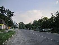 Medenychi.JPG