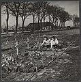Meisjes van Eelderwolde (Drenthe) leggen bloemen op de graven van het voorlopige, Bestanddeelnr 30008 001.jpg
