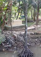 MekongDelta-Sarcophagus