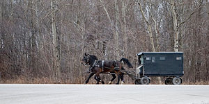Woolwich, Ontario - Old Order Mennonite buggy still common in Woolwich Township