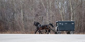 St. Jacobs, Ontario - Old Order Mennonite buggy near St. Jacobs; this type of conveyance is still common in the area