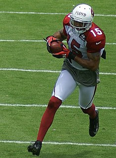 Michael Floyd American football wide receiver
