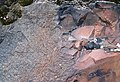 Microsyenite dike (Precambrian; Michipicoten River Bridge South roadcut, south of Wawa, Ontario, Canada) 37 (47925017851).jpg