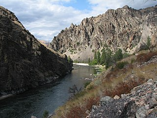 Frank Church–River of No Return Wilderness Wilderness area in Idaho, United States