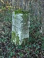 Milestone, Studley Green - geograph.org.uk - 104420.jpg
