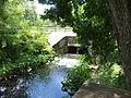 Mill Creek at Lake Irma Dam.JPG