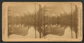 Mirror Lake, Yosemite Valley, California, U.S.A, by Strohmeyer & Wyman.png