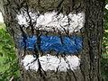 Modrá turistická značka - detail (001).JPG