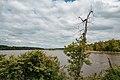 Mooers Lake (Mississippi River), Cottage Grove, Minnesota - Hazen P Mooers Park, Grey Cloud Island (40718111060).jpg