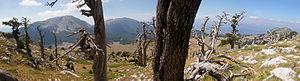 Pollino - Mount Pollino from the top of Serra delle Ciavole