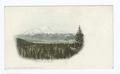 Mt. Shasta, Mt. Shasta, Calif (NYPL b12647398-62031).tiff