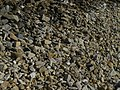 Muchas piedras medianas en la costa acapulqueña.jpg