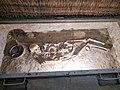 Museum of the History of Boguslav Region (Ukraine) Музей історії Богуславщини (Україна) (50170317571).jpg