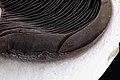 Mushroom focus stacked macro (5540697723).jpg