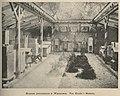 Muzeum Pszczelnicze w Warszawie (61370).jpg