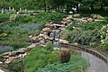 Myriad Botanical Gardens May 2016 06.jpg