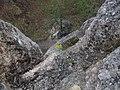 NPR Súľovské skaly (15).jpg