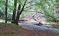 Nature reserve Pavlinino udoli (014).jpg