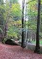 Nature reserve Pavlinino udoli (019).jpg