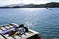 Natureza ilha grande deck DSC1151.jpg