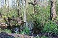 Naturschutzgebiet Zarth April 2016.jpg