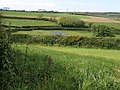 Near Hutcherleigh - geograph.org.uk - 1330021.jpg