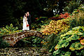 Ness Botanic Gardens.jpg