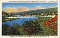 New Bridge across the Delaware from Shohola, Pa., connecting Barryville, N. Y., Eldred, N. Y., Highland Lake, N. Y., and Yulan, N. Y (72859).jpg