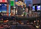Night in Shinjuku 3.JPG