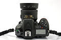 Nikon D7100 DSC7311EC.jpg