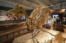 Nipponosaurus.jpg