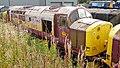 No.37521 (Class 37) (6133091853).jpg