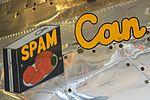 Nose-art on P-51D Mustang '472861 - 607' (N5441V) (26617043081).jpg